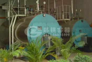 郑锅容器 WNS8吨燃气蒸汽锅炉 - 1